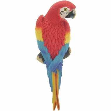 Dierenbeeld rode ara papegaai vogel 31 cm tuinbeeld hangdeco tuinbeel