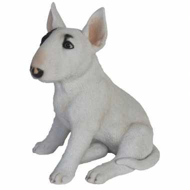 Tuinbeeld bull terrier hond 34 cm tuinbeeldje